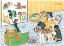0121 Rescue School for dogs