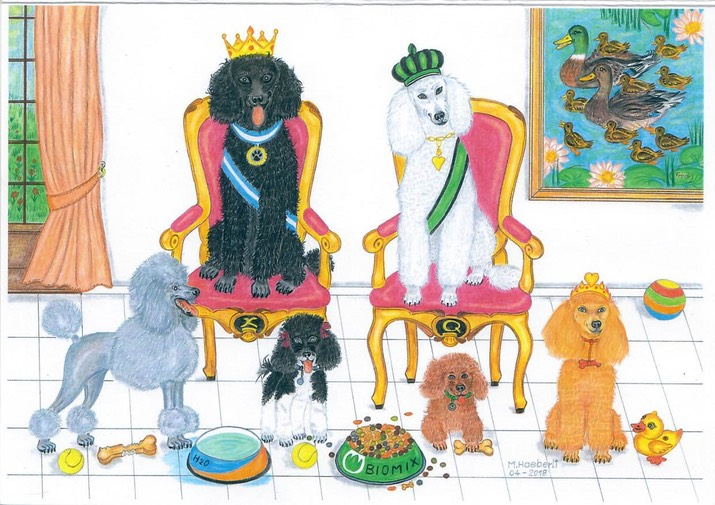0134 - The Royal Poodle family2